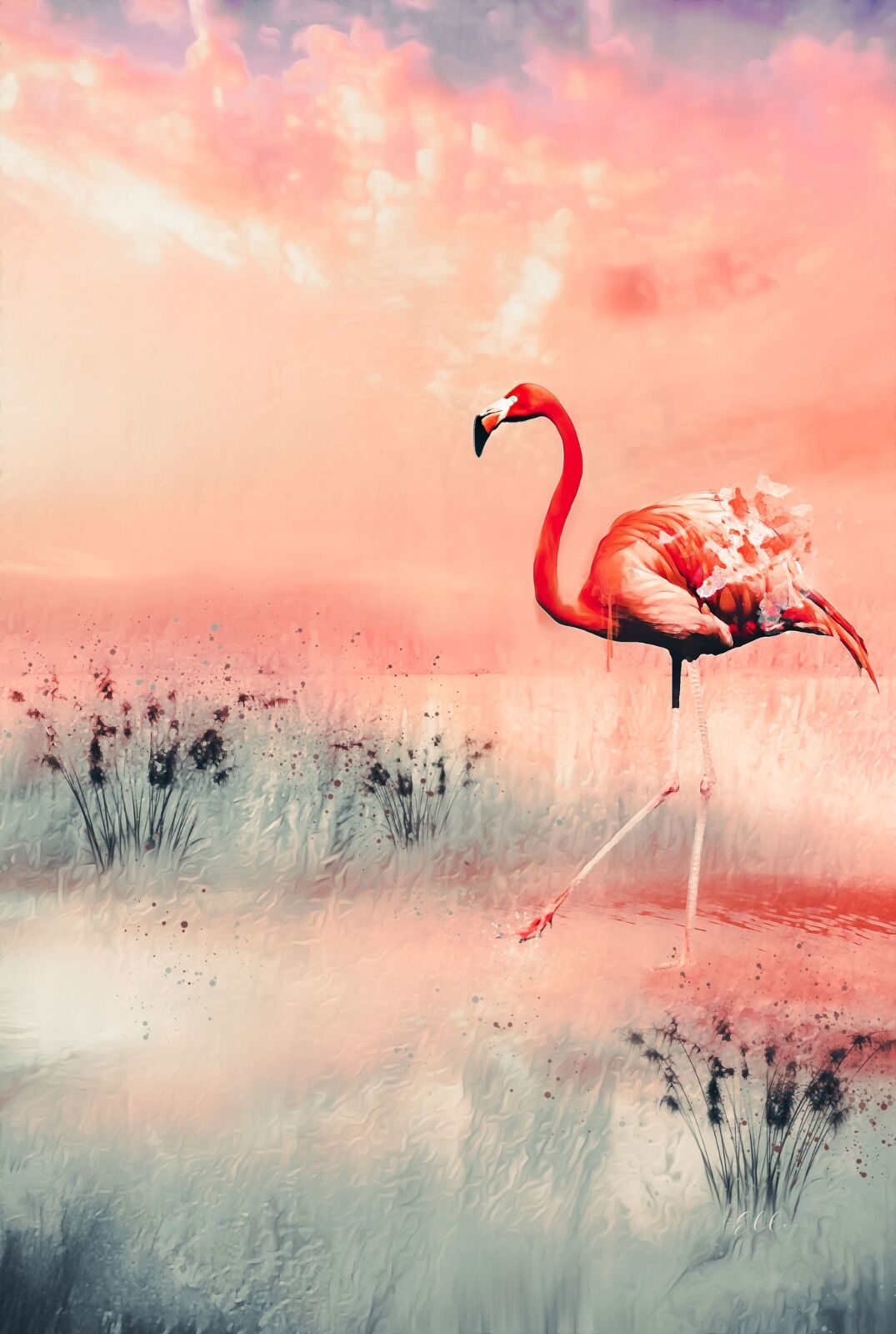 Hot pink Flamingo