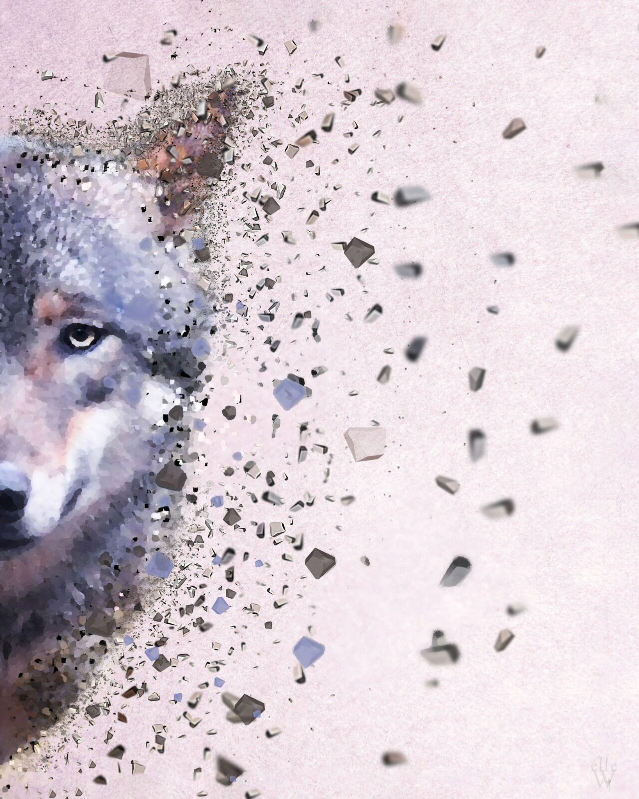 Wolf - Dispersion Effect