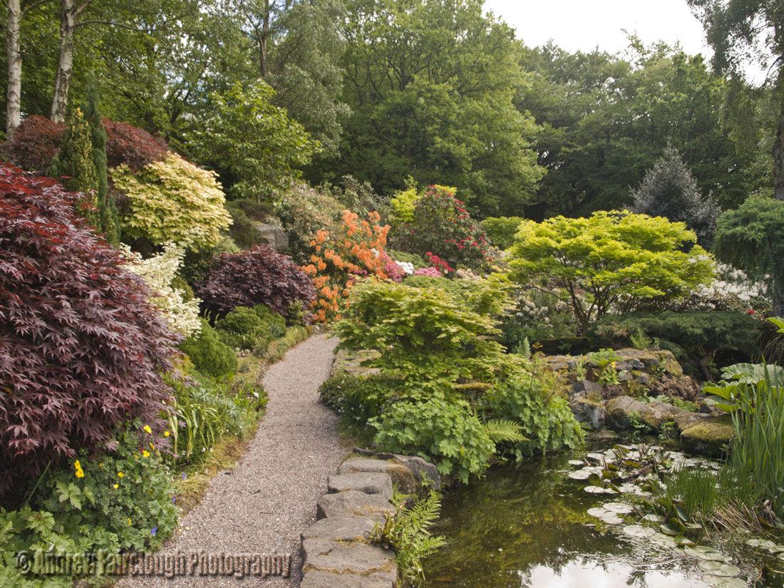 Streamside Walk at Lea Gardens