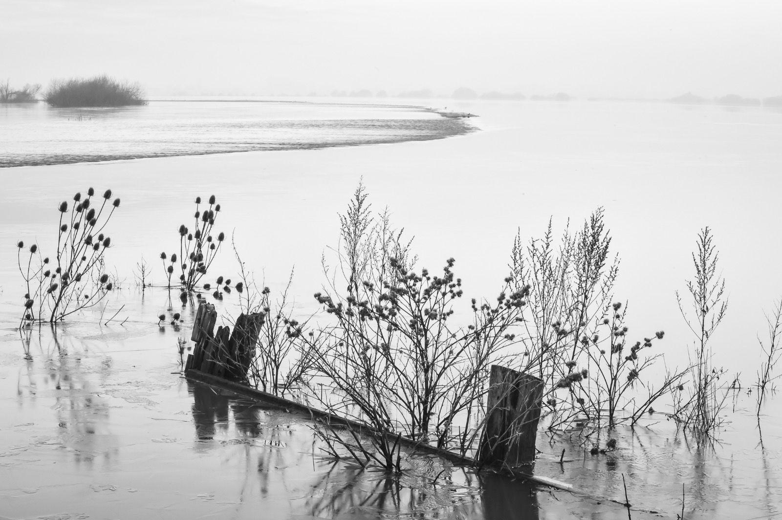 Retreating waters