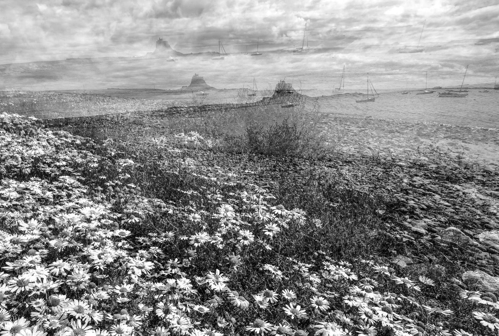 Textures of Lindisfarne