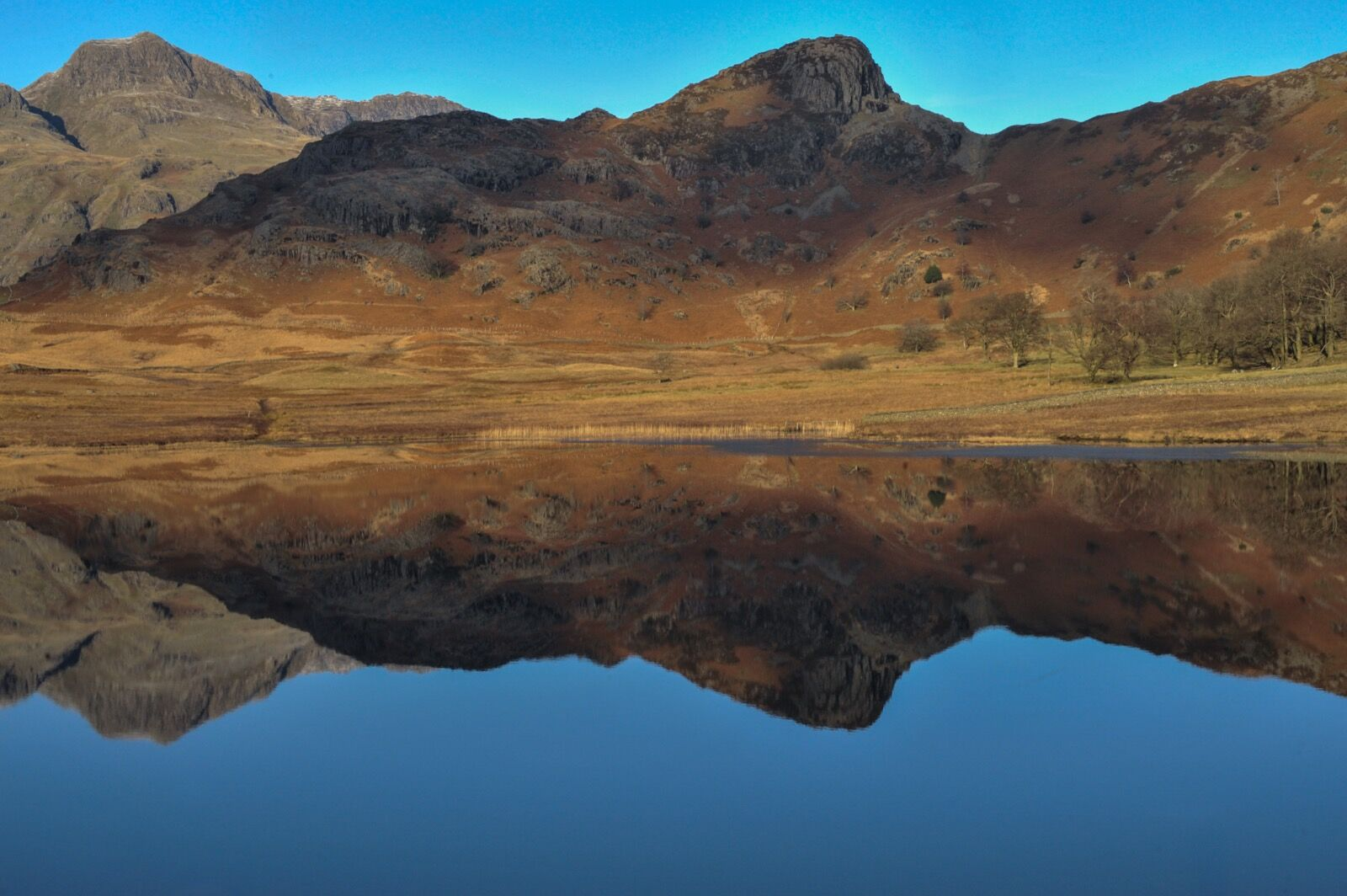 Reflections of Langdale