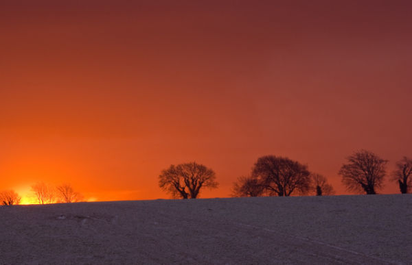 Dawn at Badbury Rings