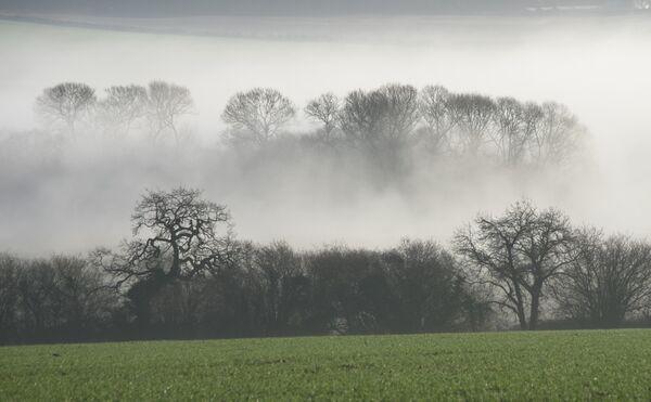 Horton Mist