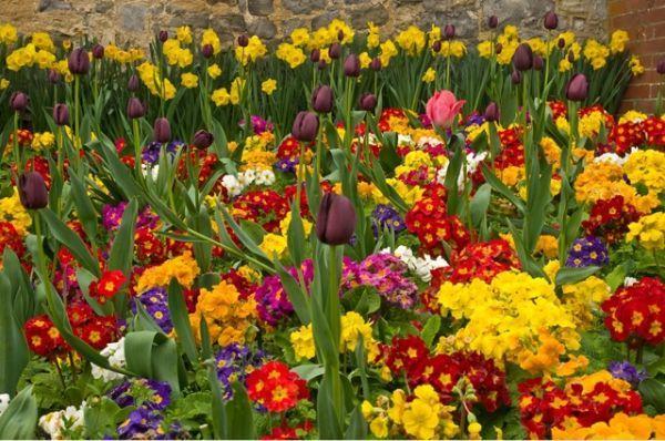 Langmore Gardens
