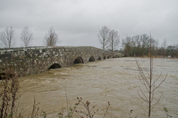 River Stour in Flood