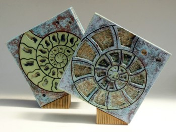 Tumbling Squares - Cross-section ammonite design