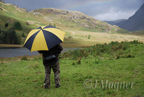 Rainy Day at Blea TArn
