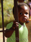 Orphan Child-South Africa