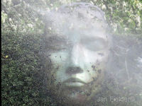 Face In The Mist