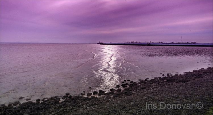 Thorny Bay