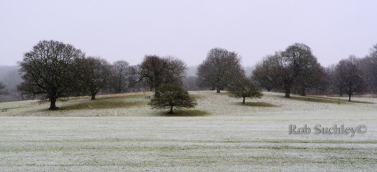Snow On The Weald
