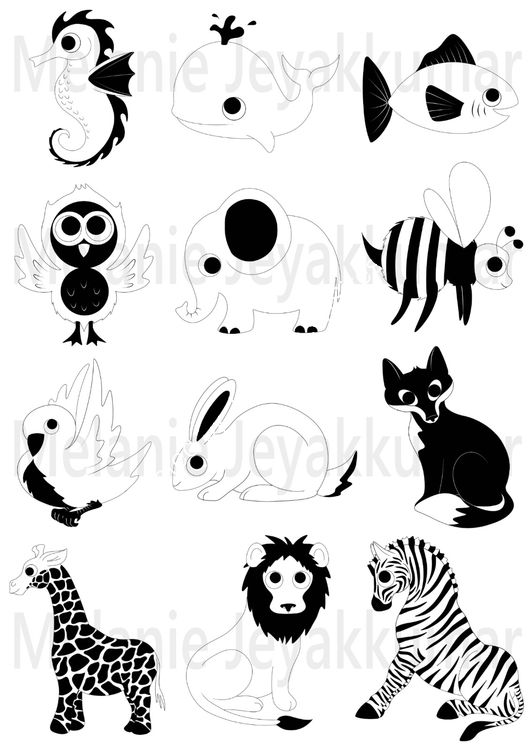 Animals black white