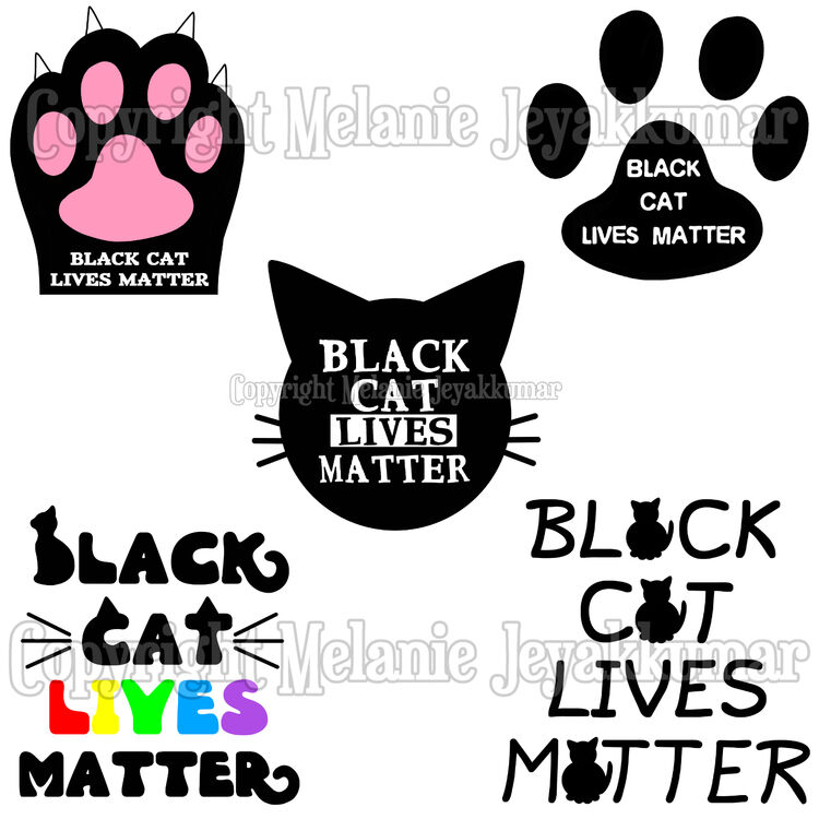 cat lives