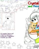 Crystal Fairies Colouring Book