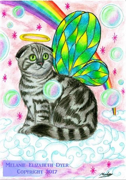 Scottish fold fairy cat