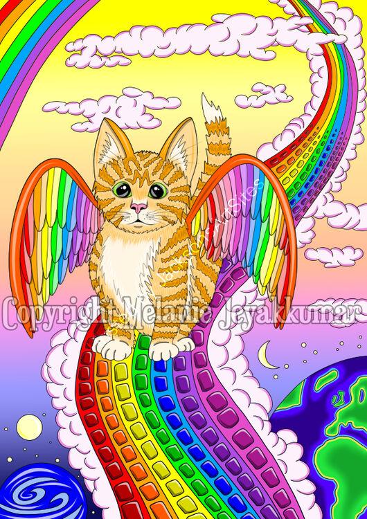 rainbowbridgekitten