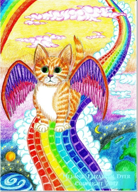 Rainbow Bridge Kitten