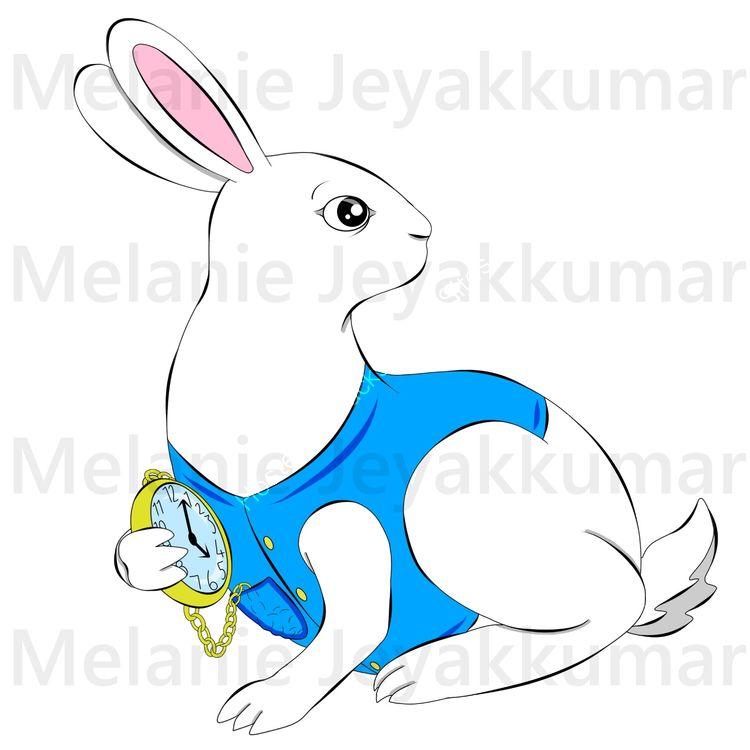 white rabbit colour