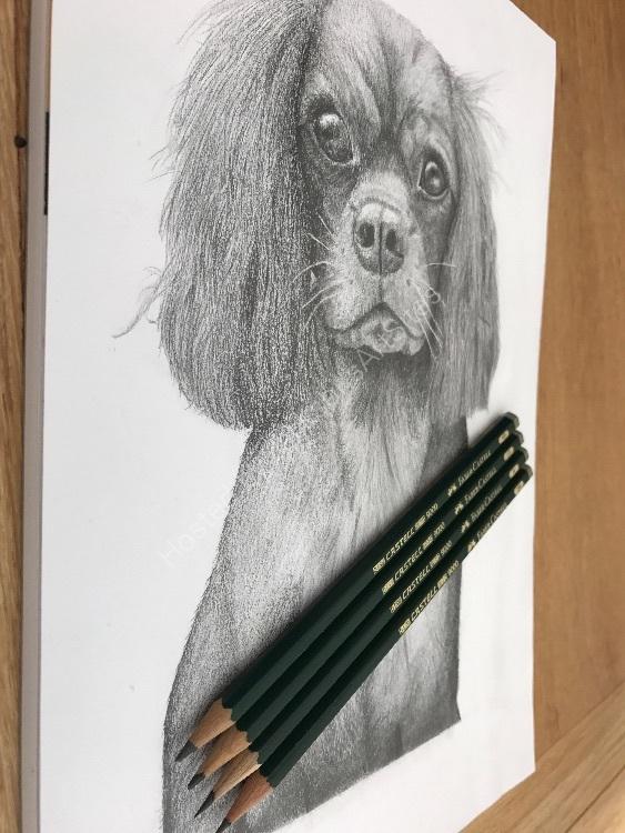 Graphite Milli pencils