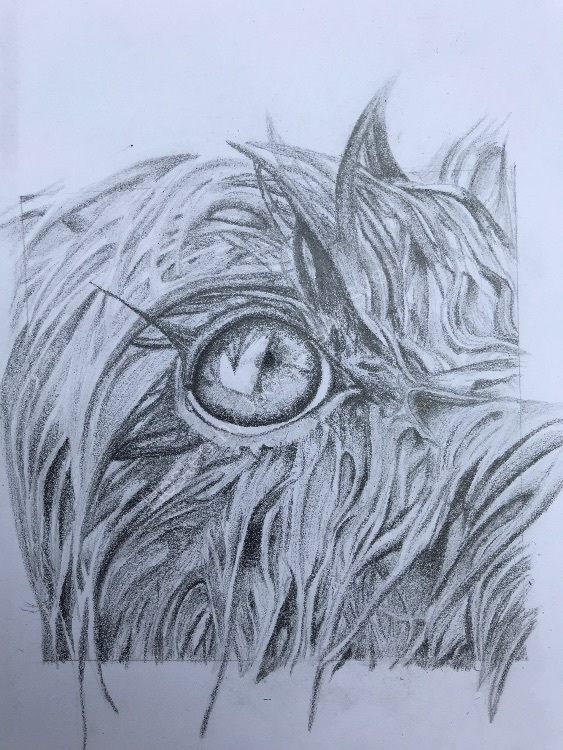 Graphite Molly wet eye