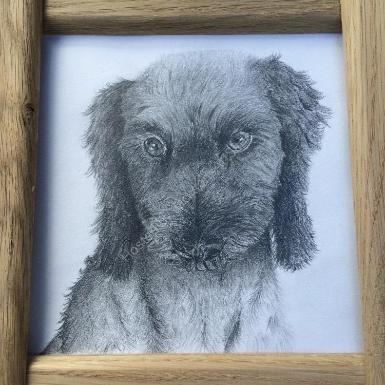 Graphite Oak framed Molly