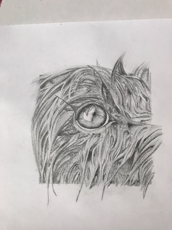 Graphite wet Molly eye