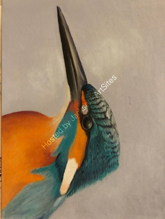 King fisher WIP