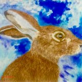 Mystical Magical Hare