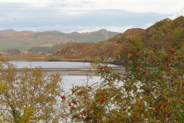 River Ad - Argyll