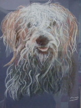 Shaggy Dog Pastel