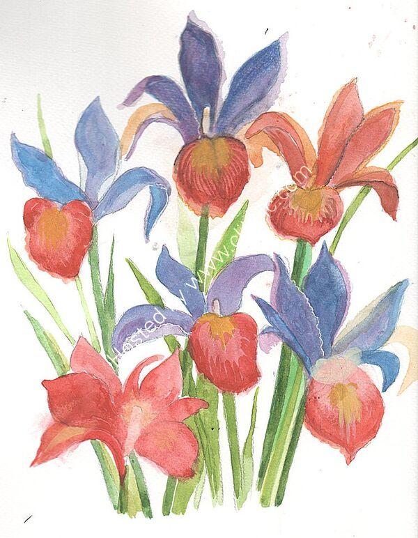 thumbnail irises (1)