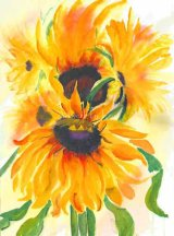 Sunflowers - Watercolour