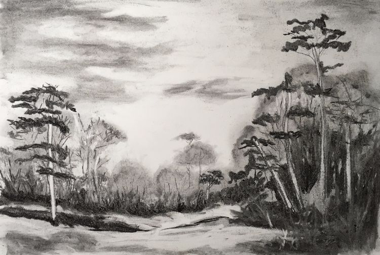 Additional Trees in charcoal