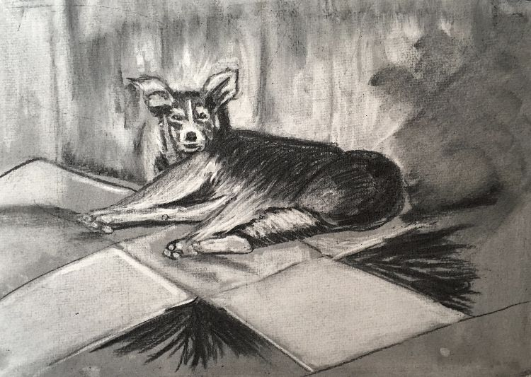 Dog in charcoal relief