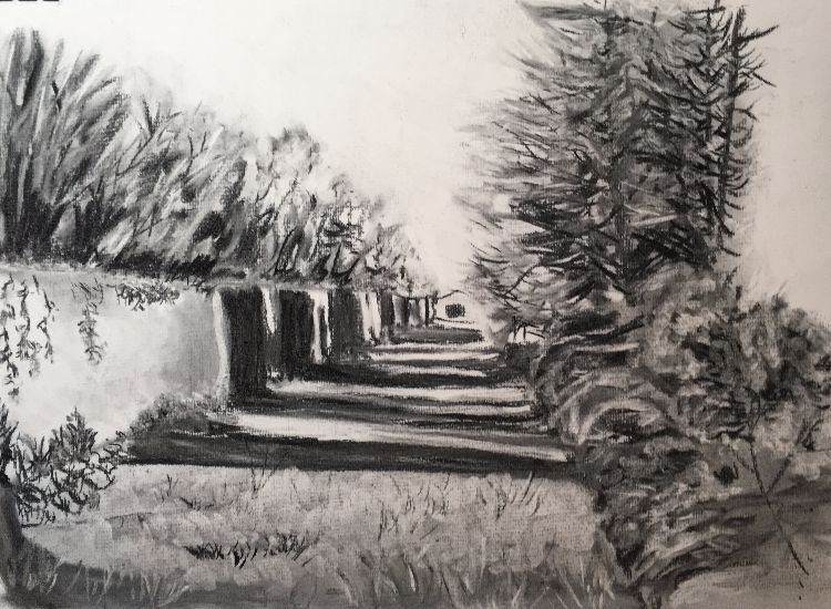 Shading in Charcoal