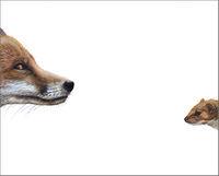 Top Predator - Fox & Weasal