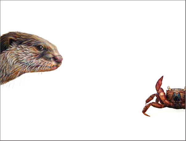 Top Predator - Otter & Crab