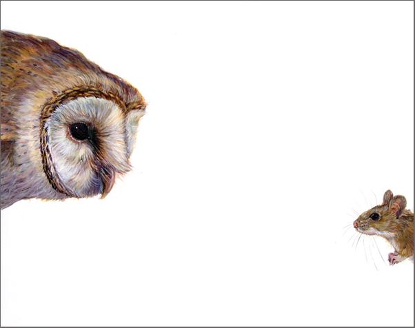 Top Predator - Owl & Mouse
