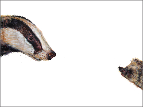 Top Predator - Badger & Hedgehog