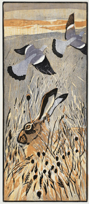Hare and Pigeons