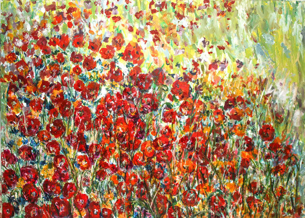 Poppies in the Wild