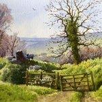 Exmoor spring