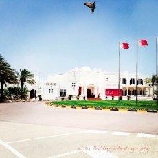 Doha Golf Club : Bird photo bomb