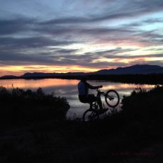 Sunset bike ride … Paul Cluver Wines, Grabouw, South Africa