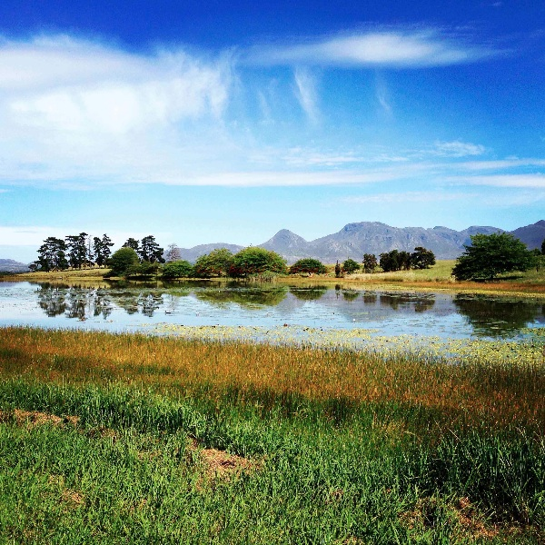 Natural : Paul Cluver Estate, South Africa
