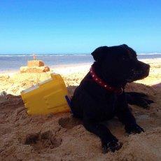 My mate Stella, building sand castles : Stillbaai, South Africa