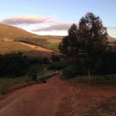 Time for a run : Paul Cluver Wines, Grabouw, South Africa