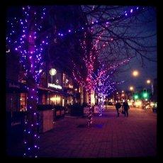 Festive street lights … winter time : Greater London