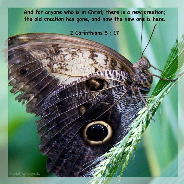 LBP - 2 Corinthians 5 : 17